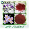Herbal Extract ! Manufacutrer wholeslae saffron flower extract ! Saffron seed,saffron seed price