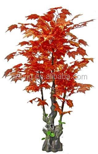 2016 di vendita caldo finto albero di acero canadese for Acero rosso canadese prezzo