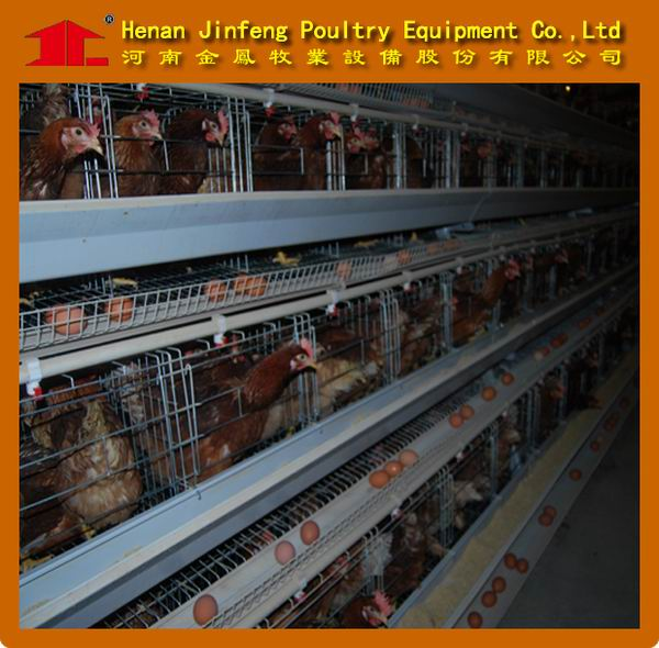 farm use bird chicken cages