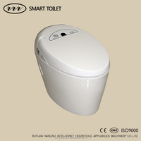 Integrated Electric Combined Bidet And Toilet Without Water Tank ZJZ-1200
