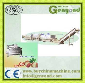 Shanghai Electric Rambutan Peeler Machine & Equipment