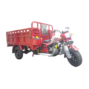 Best quality trike tricycle cargo 250cc cargo motor tricycle