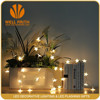 Top selling Low Power Consumption High Brightness 2835 smd led strip light