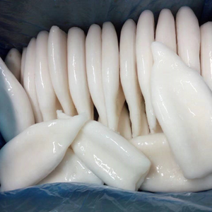 Illex Frozen Squid Tube U5,U10 Clear squid Tubes Suppliers