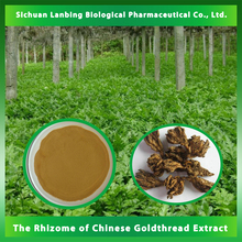LanBing supply Multifunctional natural chinese herbs the rhizome of Chinese goldthread extract for wholesales