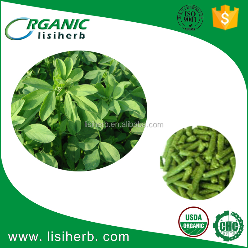high quality Animal feed Alfalfa Meal / Alfalfa Hay for sale