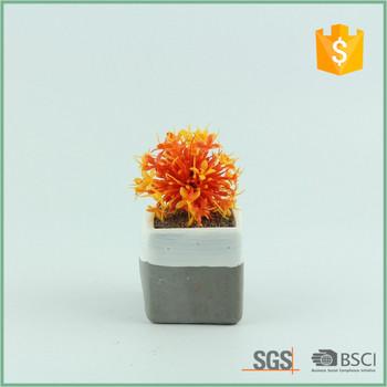 Mini Modern Square Indoor Gray Succulent Cactus Plant Pots