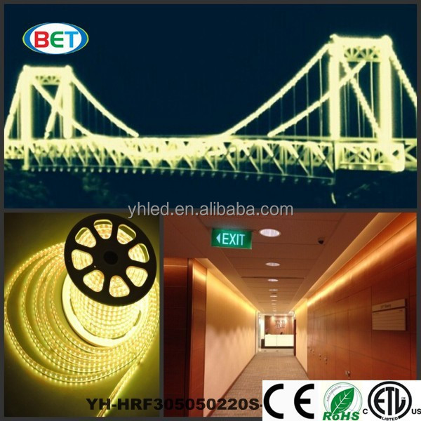 Hot Sell 3000K 2700K 2400K IP67 LED Strip bridge light 5050 LED 110V 220V SMD5050 waterproof led strip warm white