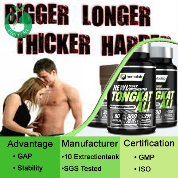 Hot Selling Tongkat Ali Extract For Man Tongkat ali Root Extract 200:1