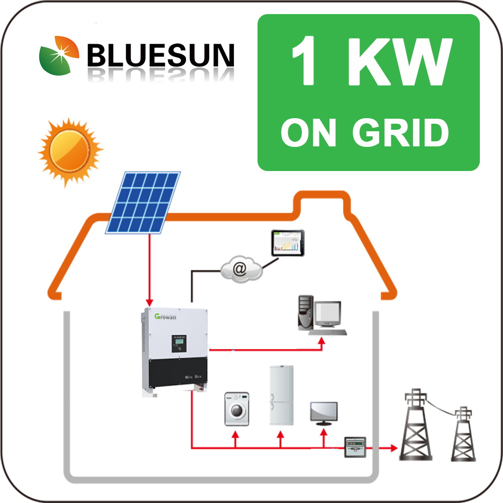 Bluesun on grid solar system 1000w best sell solar prepaid system
