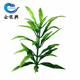 Large artificial seaweed plant freshwater aquarium fish for aquarium & wall decorations