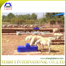 Terrui Sheep /goat drinking waterers with insulated material supplier