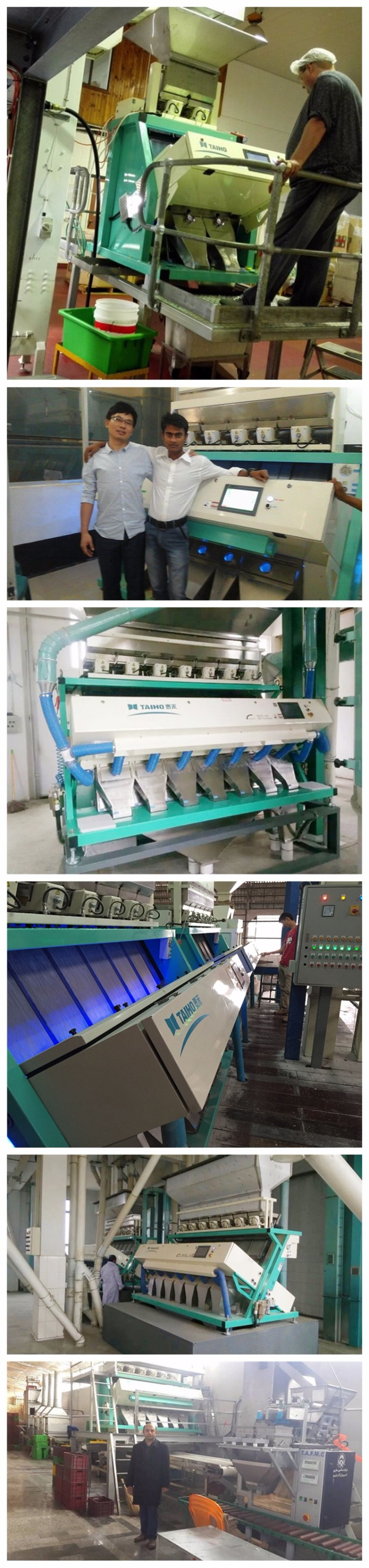 Taiho CCD peanut color sorter /separator machine in china