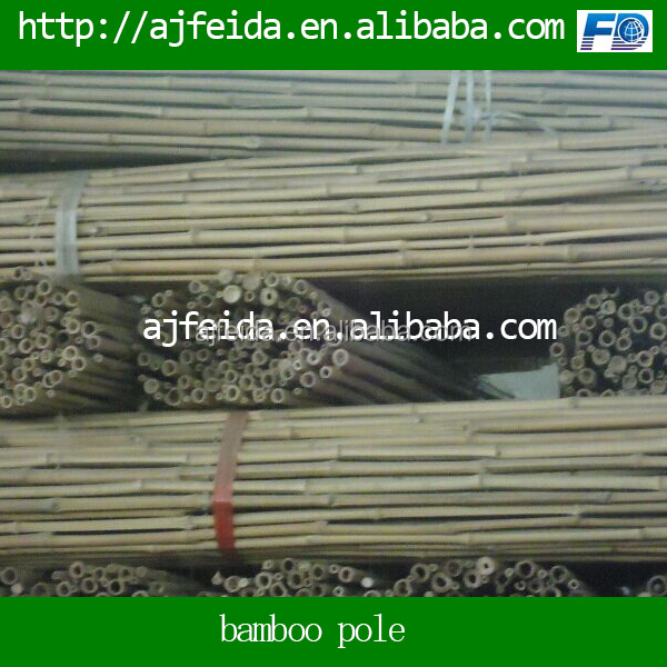tam vong bamboo pole solid