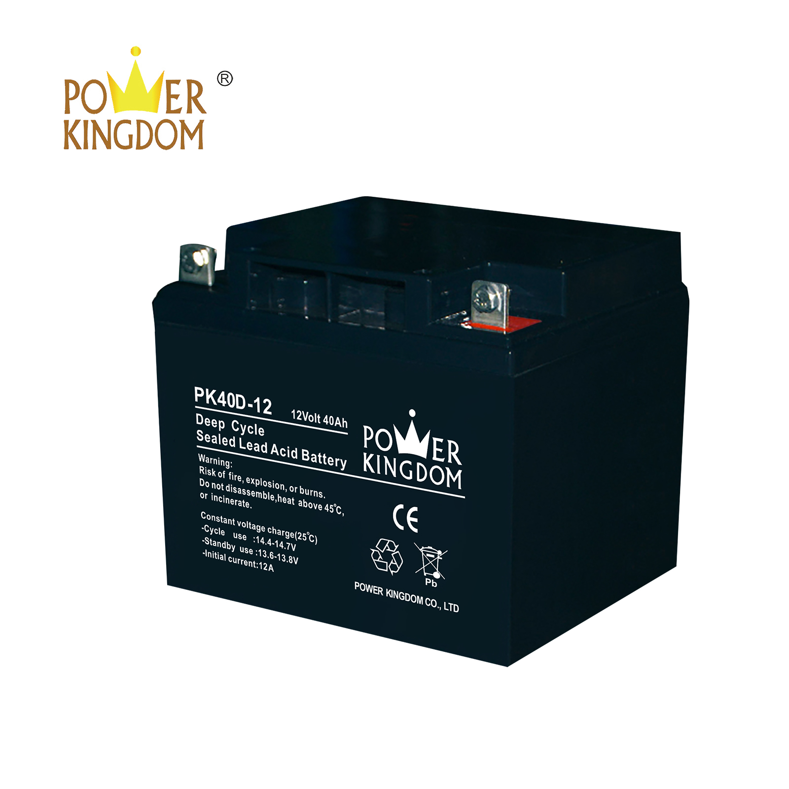 Power Kingdom New maintenance free battery Supply deep discharge device-2