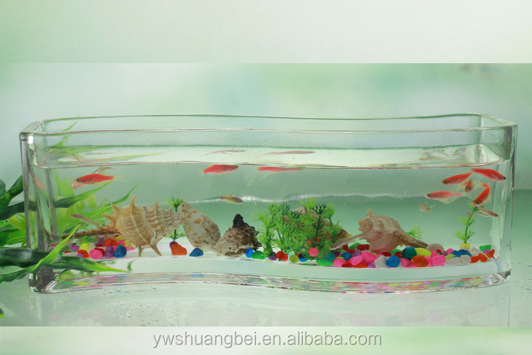 Handmade Large S-type Glass Fish Tank Fancy Shape Aquarium Fish ...