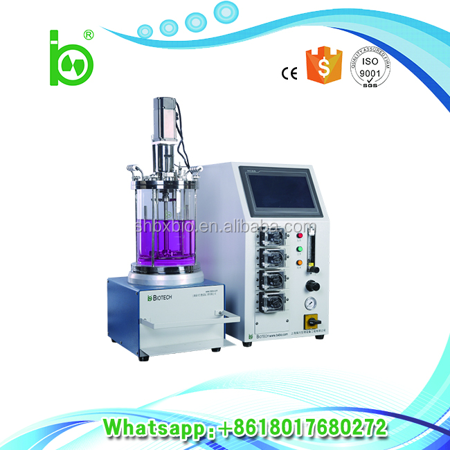 New style fixed&packed bed batch reactor with ISO9001,CE,SGS Certification