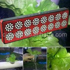 Groeien led light grote cactus kamerplanten uv led growlight, 600w led veg/bloem led grow light volledige spectrum 700nm