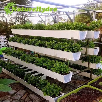 Pvc Hydroponic Plant Gutter For Strawberry Growing Buy