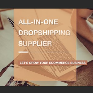 All-In-One Dropshipping supplier shopify e-commerce china fulfillment  Aliexpress USA Europe Canada Australia worldwide shipping