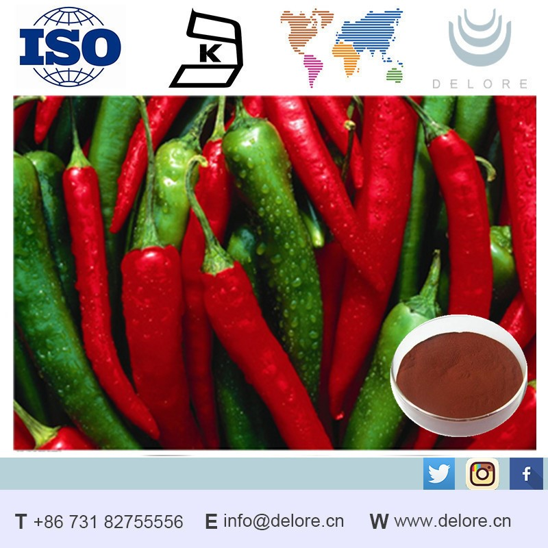 Distributor With Cheap Price (Capsicum Snnum)40%,70% Capsaicin Extract