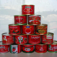 Canned Tomato Paste directly from Chinese factory