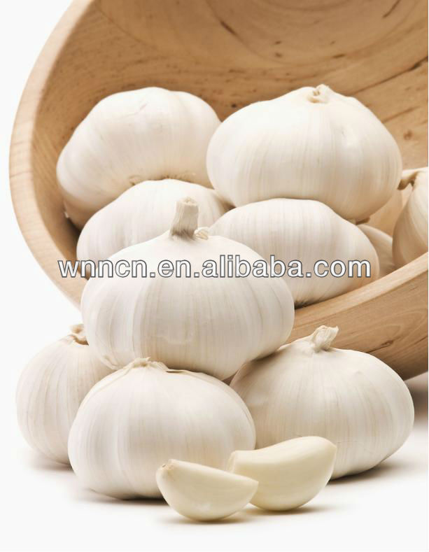 Allicin (garlicin) garlic extract Lower cholesterol levels in medical use