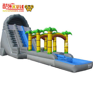 Grey Free Fall Inflatable Water Slide, Dubai Water Park Slide For Sale