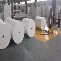 Wholesale china Mother Jumbo Roll for making toilet paper