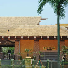 Wholesale Artificial Thatch Roofing Plastic Thatch Roof No Maintenance