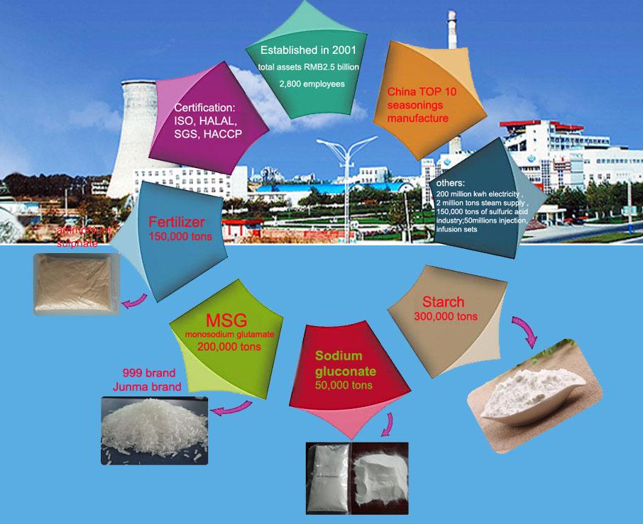 % 100% helal monosodyum glutamat, MSG mısır nişastasından yapılmış