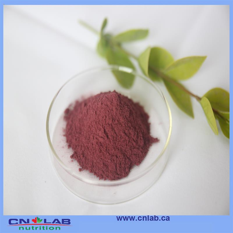 Factory price health benefits of acai berry juice good supplier from China