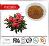 2015 HOT SALE Natural extract of crown of thorns,Crown of thorns extract at low price