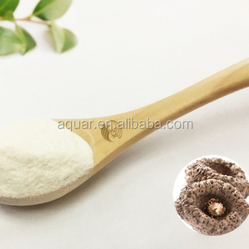 Hot sell Amorphophallus konjac 95% Glucomannan powder