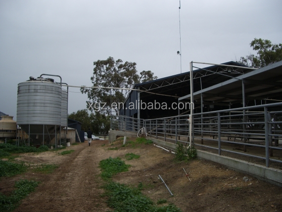 low cost advanced design cow farm building automtic equipments