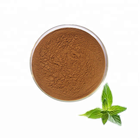 100% pure natural Green tea extract matcha powder with TP 95%