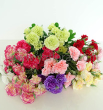 Wholesale silk flowers from china wholesale silk flowers from china wholesale silk flowers from china wholesale silk flowers from china suppliers and manufacturers at alibaba mightylinksfo