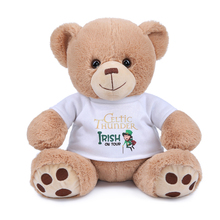 plush toy bear , stuffed bear animal