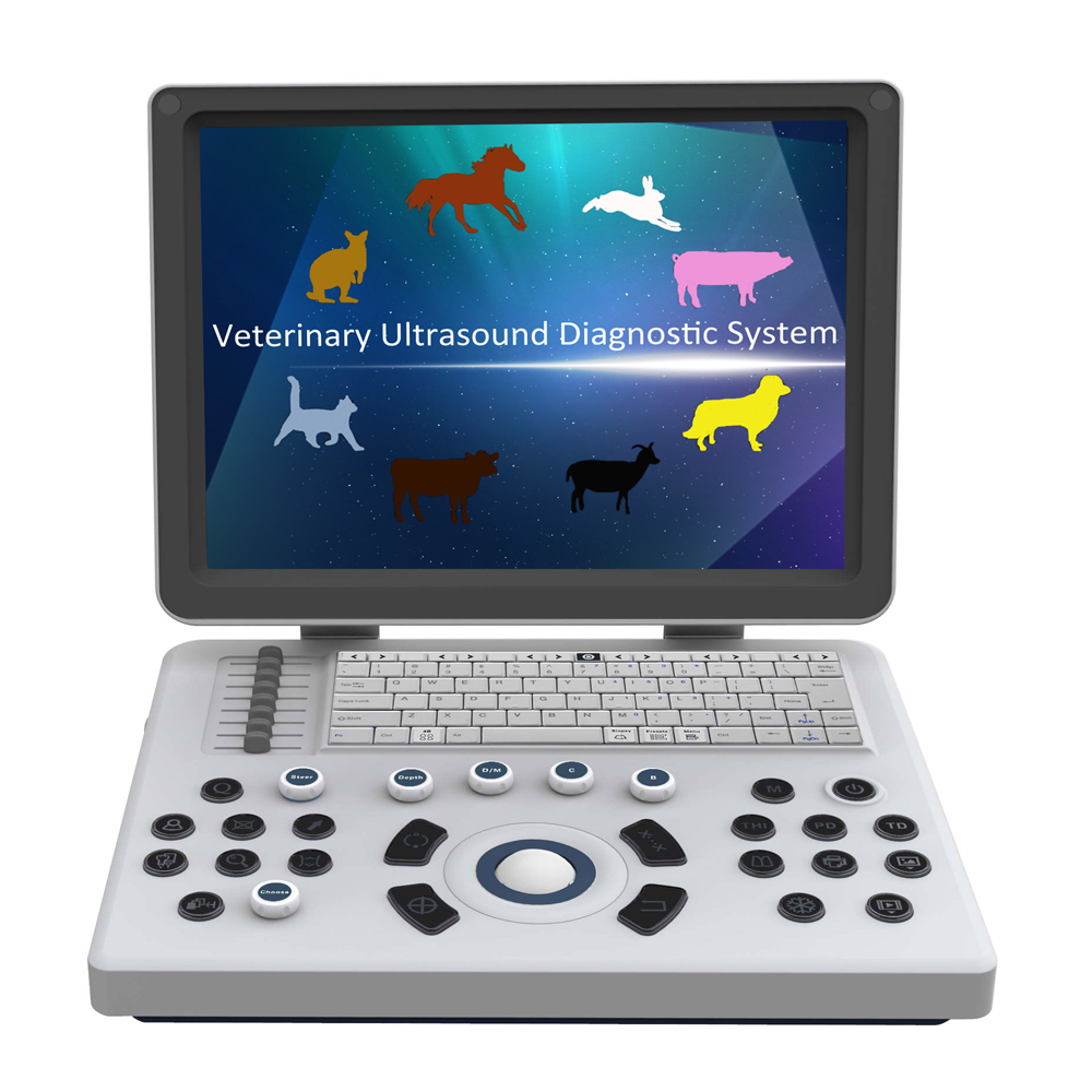 C6V Laptop Vet Ultrasound Scanner in Cow,Horse,Sheep,Dog,Cat