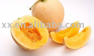 fresh cantaloup with top quality and competitive price