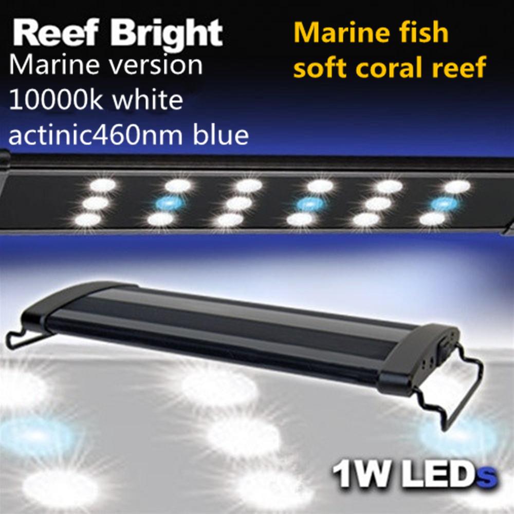 Odyssea Metal Halide Lights: 48 Hi Lumen LED Freshwater Plant Saltwater