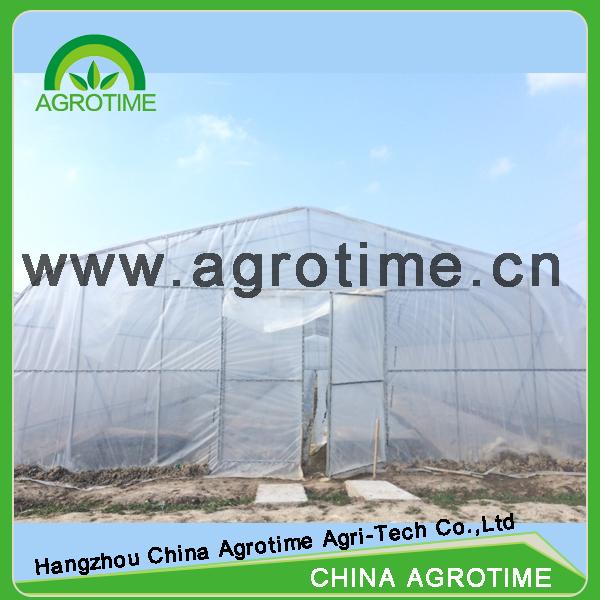 Landbouw Greenhouse Een Stop Tuinen Kas Onderdelen Single Overspanning Kassen Product Id