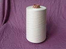 Viscose / Linen 70 / 30% NM 1 / 10 Yarn Raw white in China