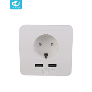 15A EU Standard Wireless WIFI Remote Control Wall Switch Socket Brand with USB Port Support Tuya Smart Home