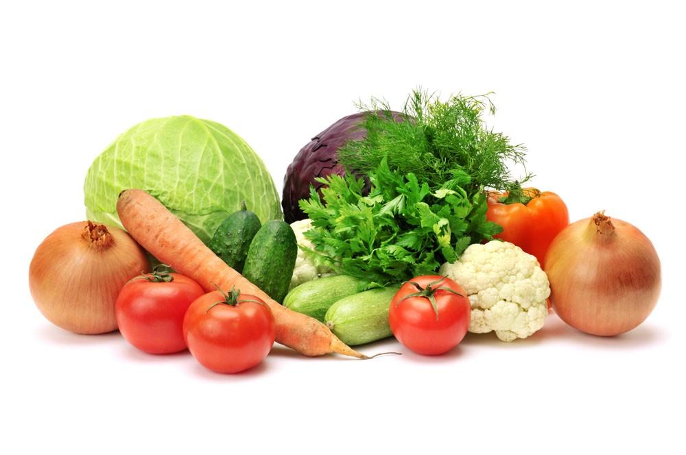online food processor price