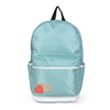 Colorful Backpack for School Students Stylish Nylon Back Pack Bag SJ159