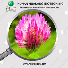 Organic Natural P.E. Red Clover Extract Powder Price
