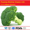 Xi Lan Hua Chinese new crop Broccoli Wholesale Prices
