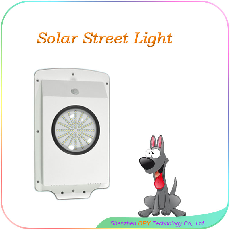6W All In Solar Street Light Controller with 40pcs LED