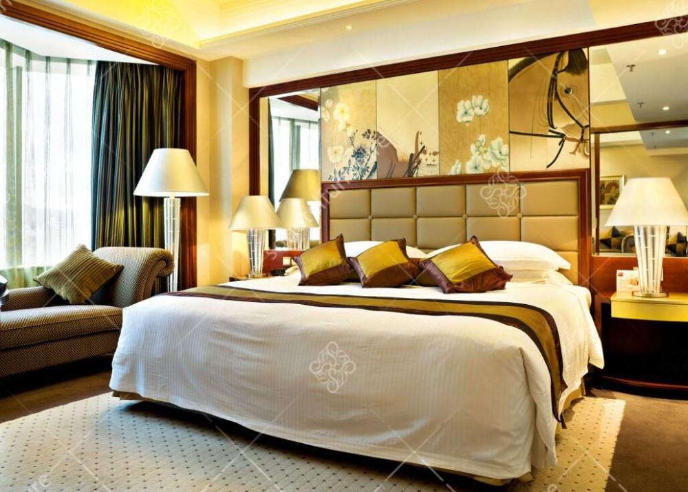 5 Star Hotel Utilizado Lujo Contemporáneo Dormitorio Suite ...